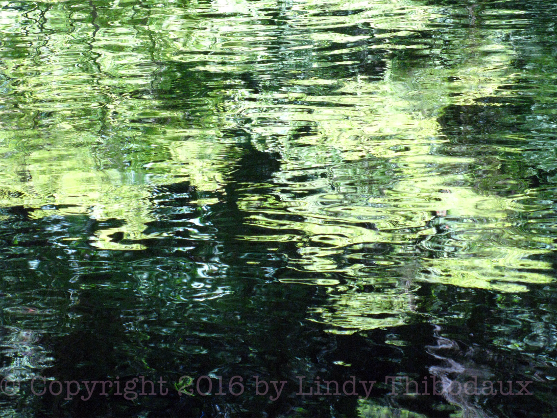 Green Water Reflection photo by Lindy Thibodaux